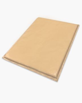 Picture of Teflon Pillow